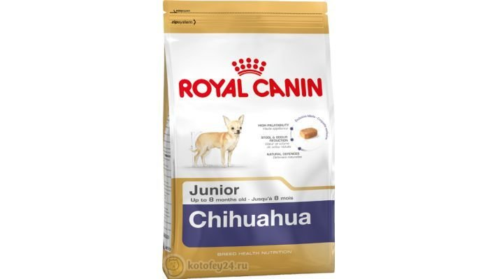 Корм [Royal Canin Chihuahua Junior, 500 гр.]